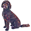 Logo petit Labradoodle d'Occitanie 2
